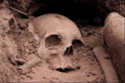 human skull condor valley