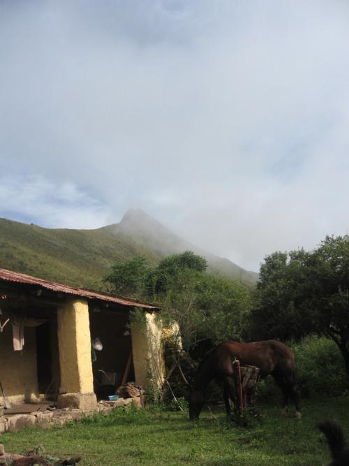 Condor Valley Scene