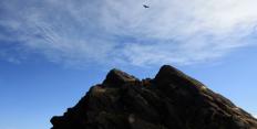 Explore Condor Valley